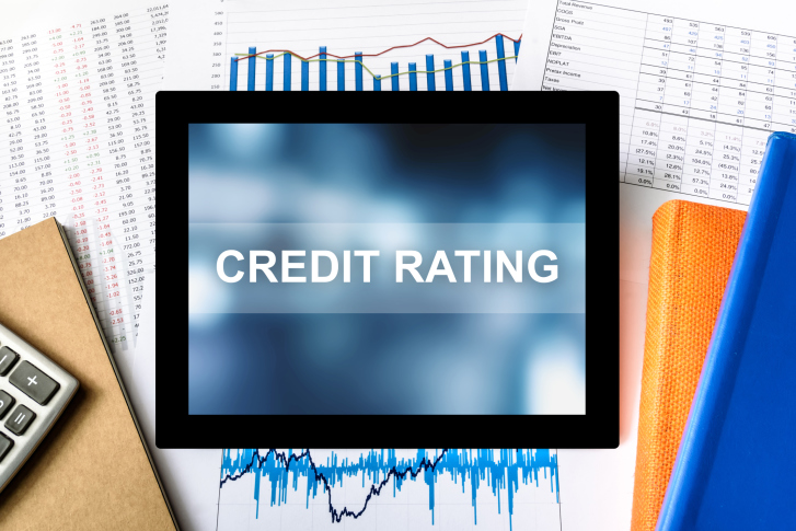 dro credit rating